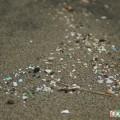 微細なプラスチック破片
